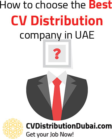 How to choose best CV Distribution Services in UAE? |