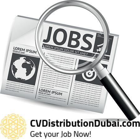 Distribution resume services